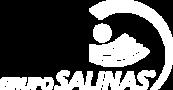 Grupo_Salinas-logo-57C137E188-seeklogo.com